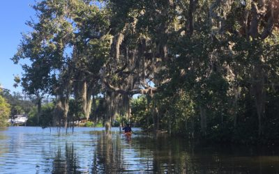 Local Wonders Part II: Paddling Delights